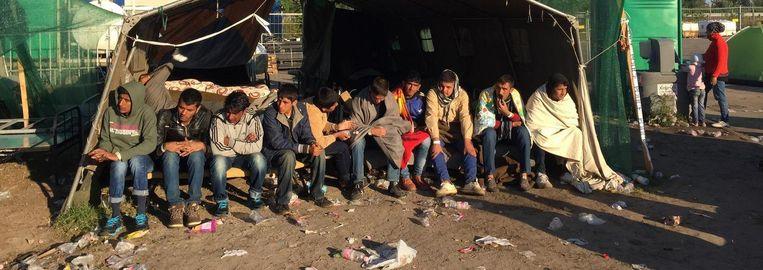 Het opvangkamp in het Hongaarse Röszke. Beeld Jan Hunin
