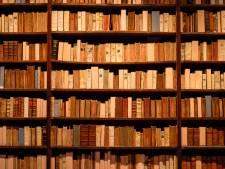 Koppel literatuuronderwijs los van het vak Nederlands