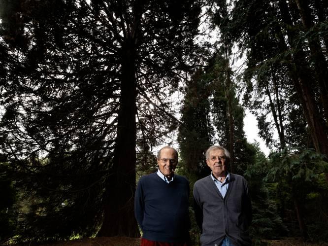 Ondanks herenakkoord zijn broers Philips op de vingers getikt vanwege illegale kap op landgoed Wielewaal in Eindhoven