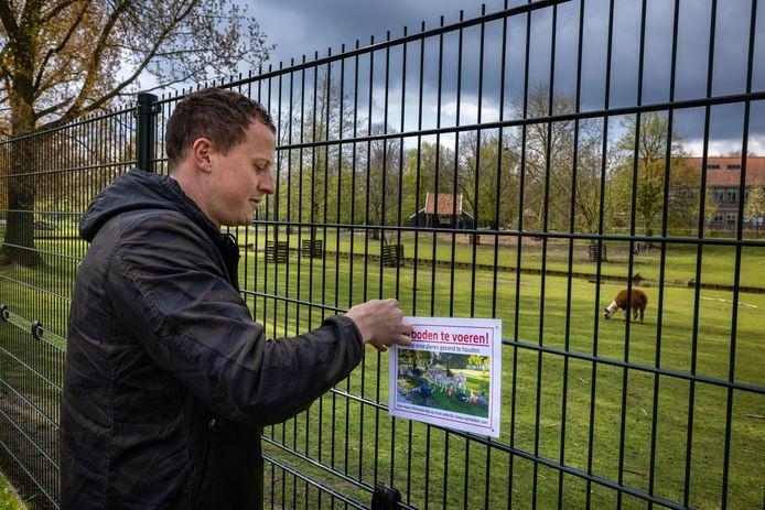 Beheerder Leon van Werven constateert dat de oproep om dieren in het hertenkamp niet meer te voeren niet onopgemerkt is gebleven. ,,Vorige week heeft één van onze vrijwilligers zich verdekt opgesteld om te kijken wat er gebeurde, maar niemand gooide nog iets over het hek.''