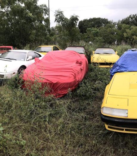 Waarom deze 13 Ferrari's in een veld staan weg te roesten<br><br>