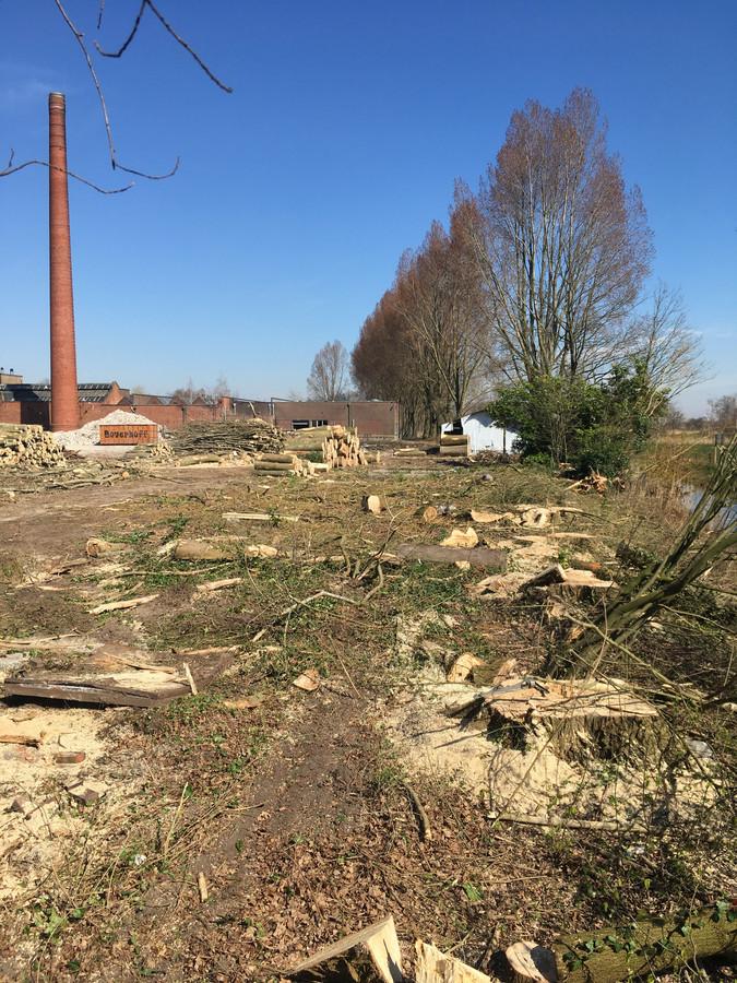Meer dan honderd bomen zijn gekapt.