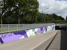 Tekst op graffitikunst in Goirlese tunnel wordt verwijderd