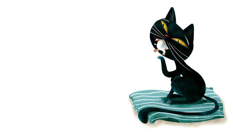Magnus en zijn superkat (Kim Crabeels). Beeld rv Lannoo
