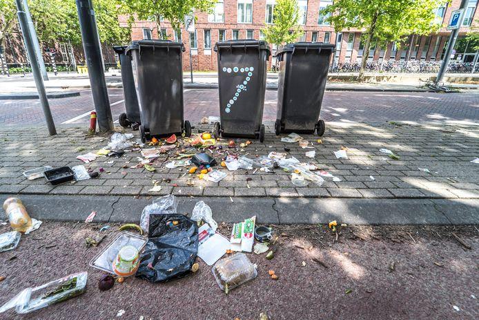 Afval en andere troep langs de Michiel de Ruyterweg in Delft.