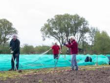 Stadsakkers gered: nieuwe plek gevonden om groente en fruit voor Voedselbank Veenendaal te verbouwen