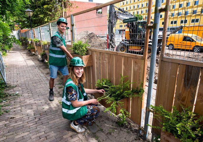 Hugo Ward en Claire Zandvliet voorzien hun groene bouwhekken aan de Vrouwjuttenhof van planten.