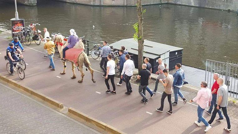 Vrijgezellenfeest met kameel in Amsterdam Beeld Maarten Poorter/Twitter