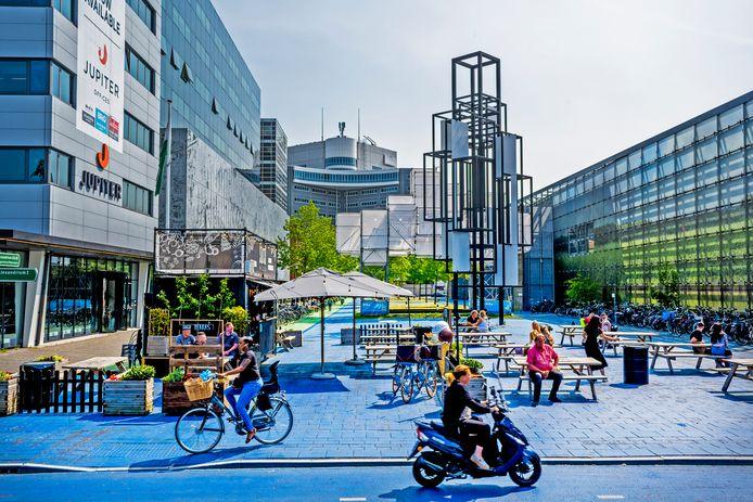Het Prins Alexanderplein in Rotterdam moet als een van de zeven stadsprojecten groener en duurzamer worden. Over vier jaar ziet het er heel anders uit, aldus wethouder Bert Wijbenga (buitenruimte, VVD).