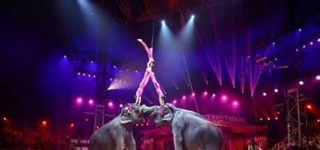 Le festival du cirque de Monte-Carlo n'aura pas lieu en 2021