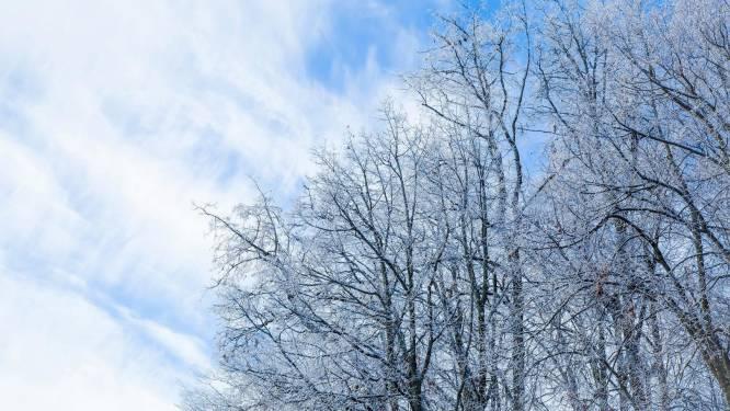 Winter is terug in het land: dit weekend vaak zonnig met 's nachts temperaturen onder het vriespunt