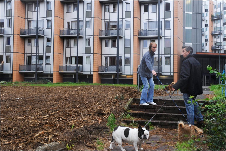 Sociale woningen in Leuven. Beeld Photo News