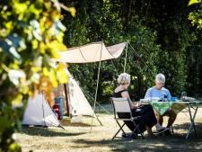 Campings profiteerden flink van warme zomer