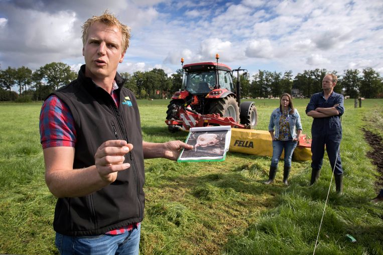 Veearts Leen Stam toont een foto van een koe die stierf aan scherp-in. Op de achtergrond Eline Vedder en Niels Wassenaar. Beeld Werry Crone
