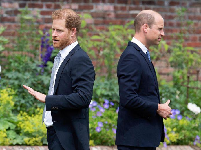 Harry en William tijdens de ceremonie