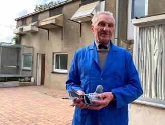 """Net voor zijn 90ste verloor Charles al zijn duiven, maar nu start hij opnieuw: """"Zolang ik in mijn duiventil raak, doe ik verder"""""""