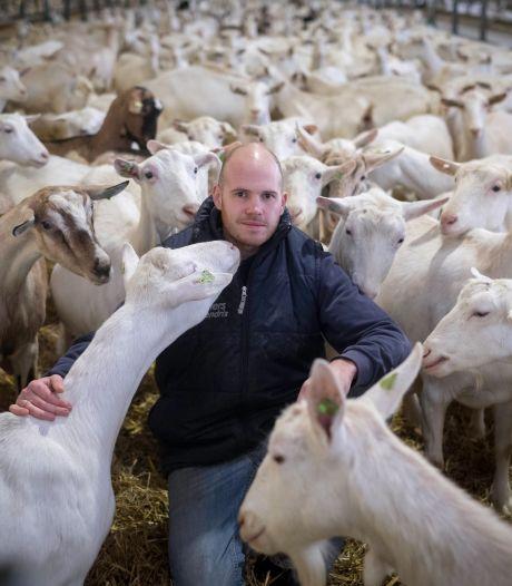 Gendtse geitenhouder ontmantelt zijn silo's om dwangsom te voorkomen