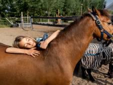 Zorgboerderij Samen Sterker: Wie wil dat nou niet. Leren klokkijken met een paard als grote wijzer