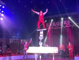 """REPORTAGE. Opnieuw naar het circus: """"De dieren zijn hun kunstjes niet verleerd"""""""