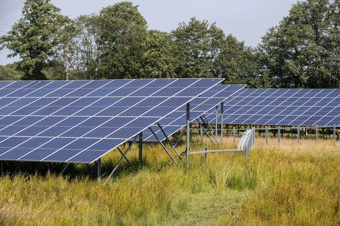 Bij bedrijventerrein Laarberg staat al een zonnepark. Er zijn plannen voor nog eens acht zonneparken in de omgeving in de buurtschappen Zwolle, Holterhoek en Hupsel.