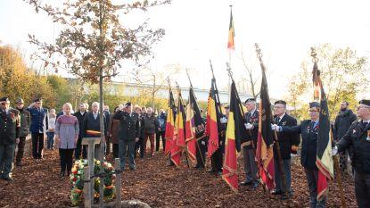 Vredesboom ingehuldigd om einde  Eerste Wereldoorlog te herdenken