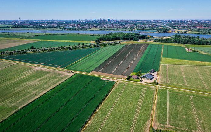 Landbouwgrond aan de noordrand van de Hoeksche Waard.