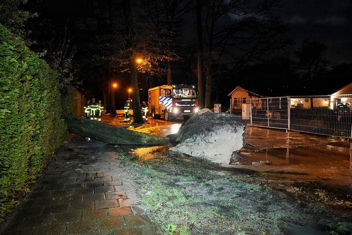De boom had de hoofdwaterleiding kapot getrokken.