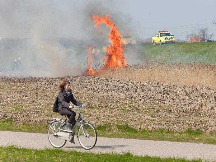 Een bermbrand in de buurt van Kruiningen op archiefbeeld.