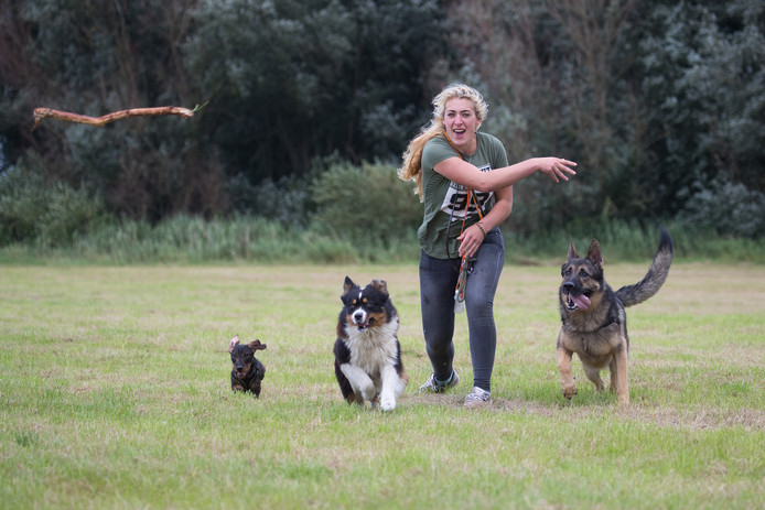 Hondenuitlaatservice van Ellen Dijkslag in Wijhe