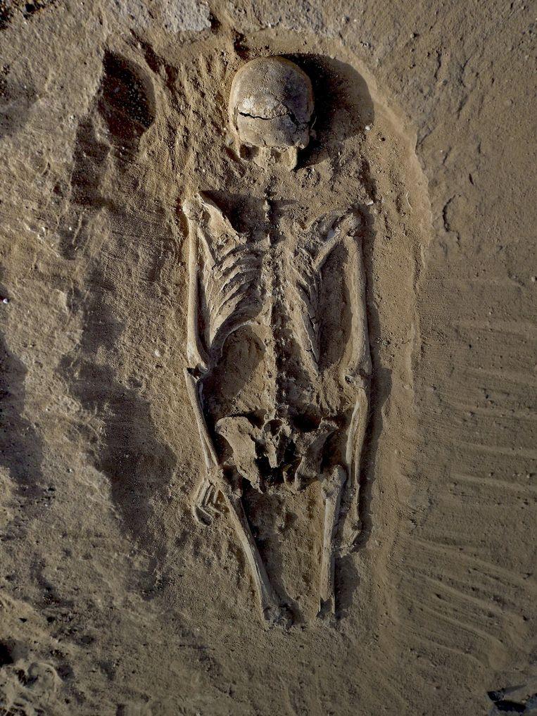 Het skelet van een man met dodelijke verwondingen in de schedel, die met een scherp voorwerp moeten zijn toegebracht, onlangs opgegraven in Nataruk in Kenia. Beeld reuters