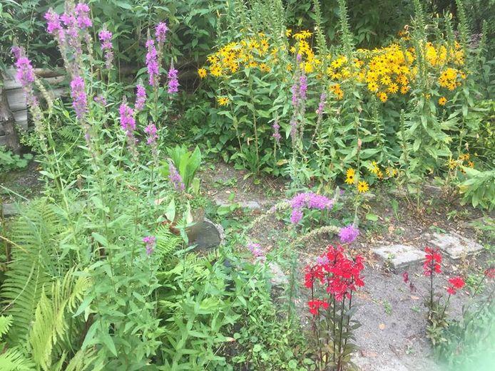 De tuin van Gerhard Bos