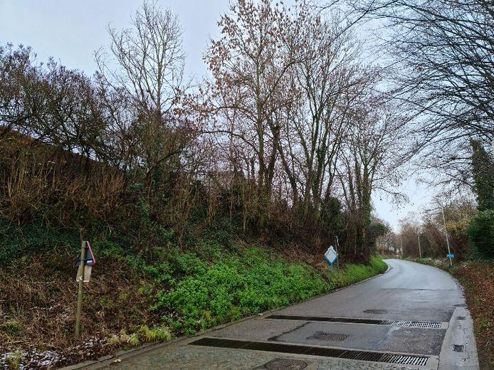 De Hazelaarweg zal komende maandag en dinsdag tijdelijk afgesloten worden in het kader van kaphoutonderhoud.