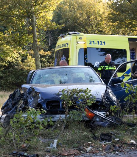Auto botst tegen verkeersbord en boom in Veghel: bestuurder naar het ziekenhuis