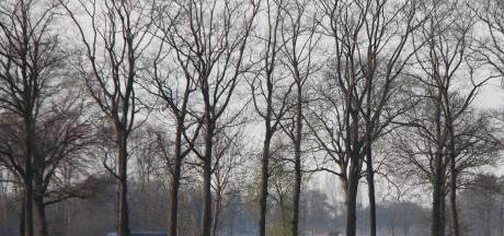 Zonnepark Batendijk tussen Haarlo en Borculo begint vorm te krijgen