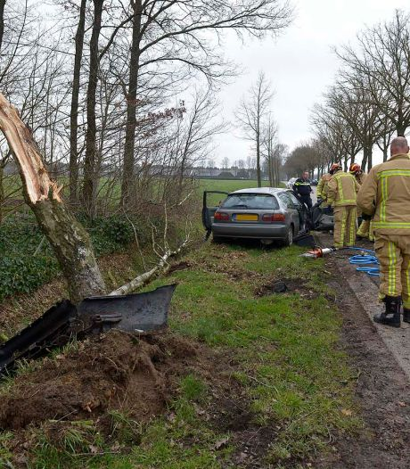 Automobilist rijdt boom omver in Hoogeloon, voertuig total-loss: twee gewonden