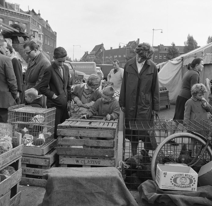 Markt op Zuid, 1959.
