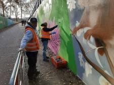 Grobbentunnel in Hengelo bloeit op met natuurbeelden van graffiti