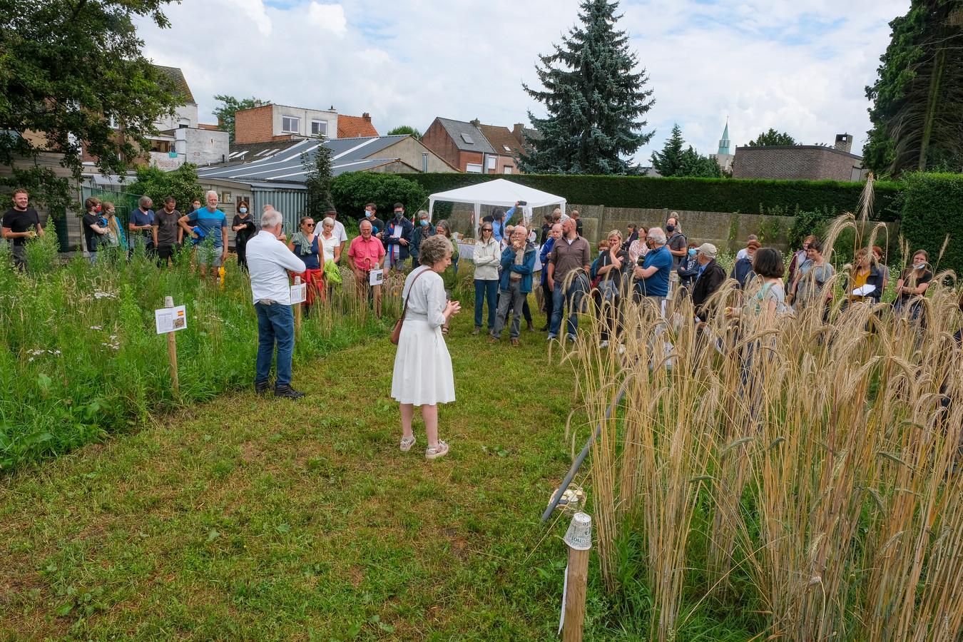 Deelnemers krijgen uitleg bij de verschillende soorten granen.
