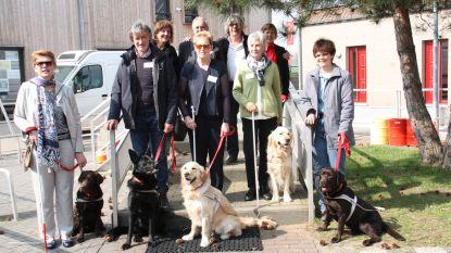 Blindengeleidehonden Priya, Victoria, Pablo, Pippa, Pavlov en Quido met succes afgestudeerd