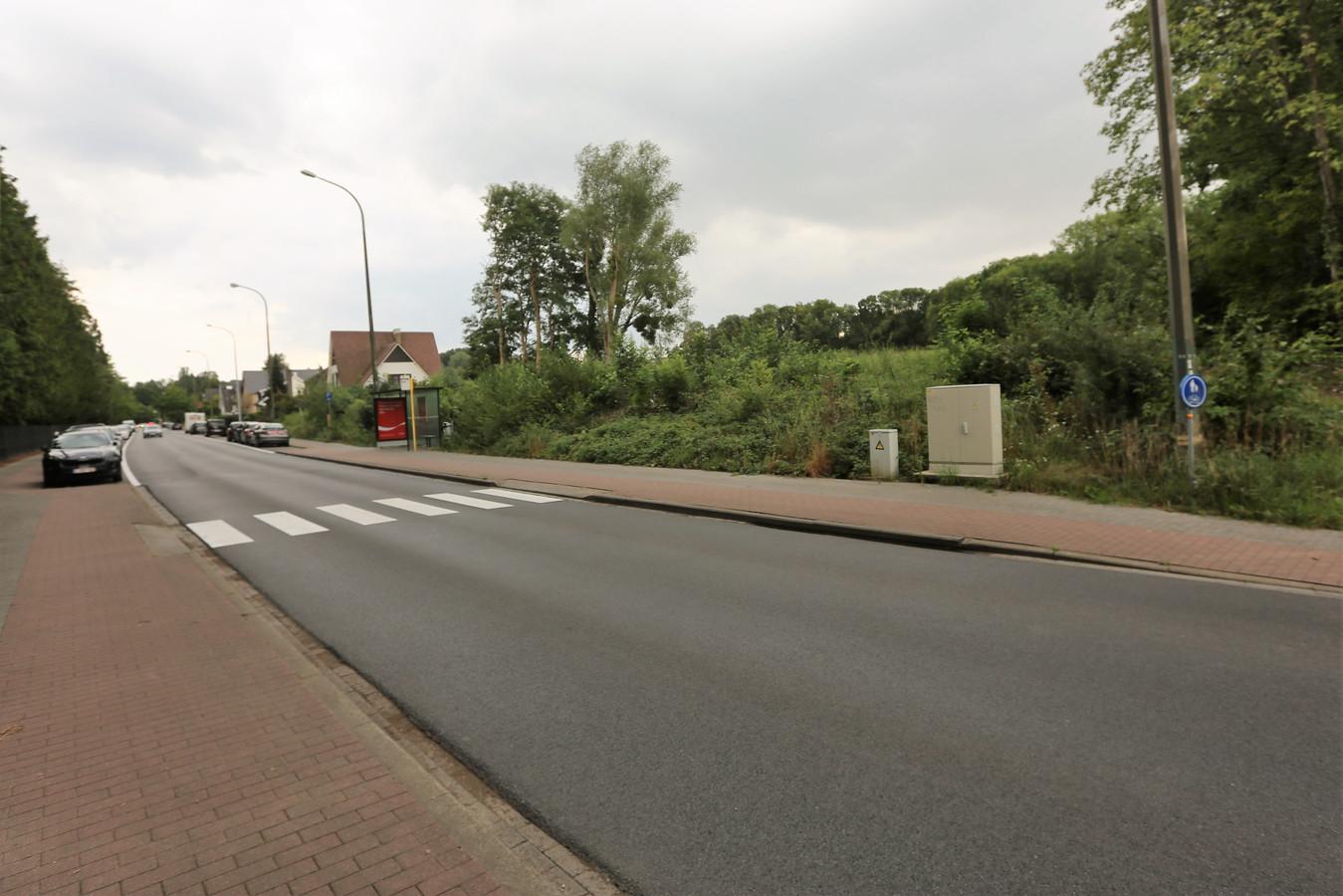 Op deze plek langs de Henri Torleylaan wil Murat Murat Kazankaya zijn feestzaal bouwen in Halle.