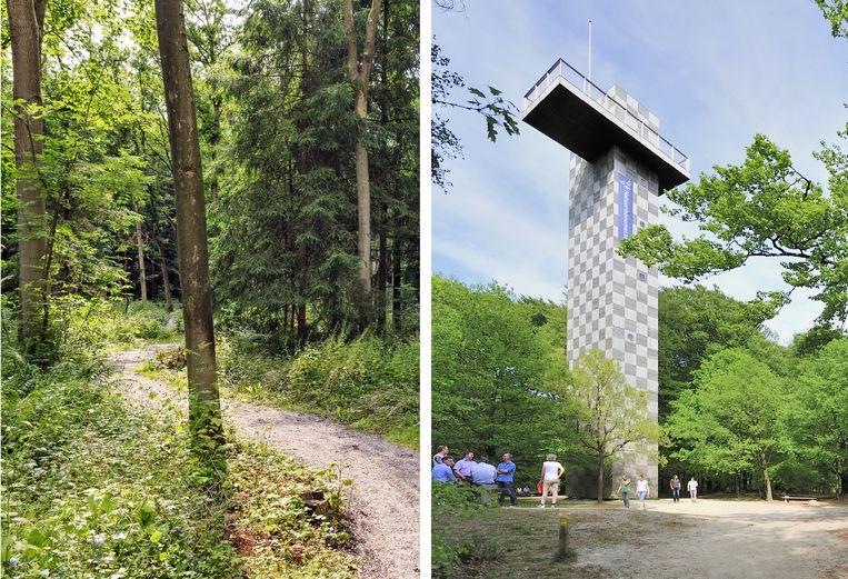 null Beeld Uitkijktoren de Kaap op de Utrechtse Heuvelrug is ruim 25 meter hoog.