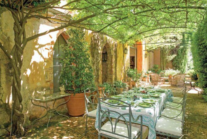De nieuwe wijngaard van George en Amal.