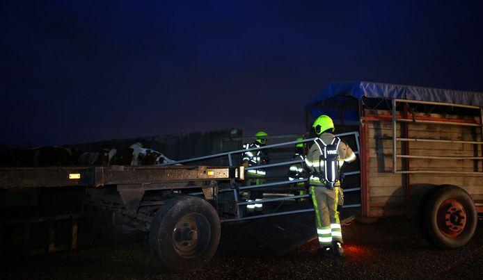 Brandweerlieden aan het werk bij het boerenbedrijf in Bruchem.