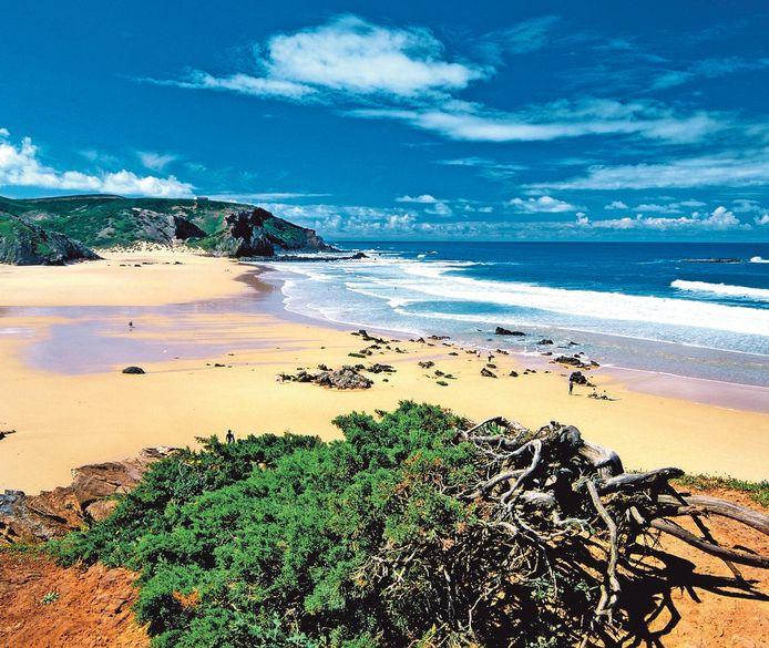Praia do Amado nabij Sangres.