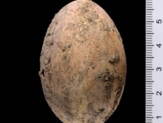 Israëlische archeologen vinden kippenei van ongeveer 1.000 jaar oud