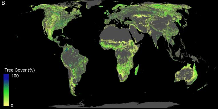 De 'ontbrekende' aanplant in de wereld: hoe blauwer, des te meer bomen er mogelijk zijn. Op de kaart zijn alleen de gebieden te zien waar aanplant mogelijk is, dus zonder steden, landbouwgebieden, al beboste gebieden, moerassen etcetera. Beeld Crowther Lab
