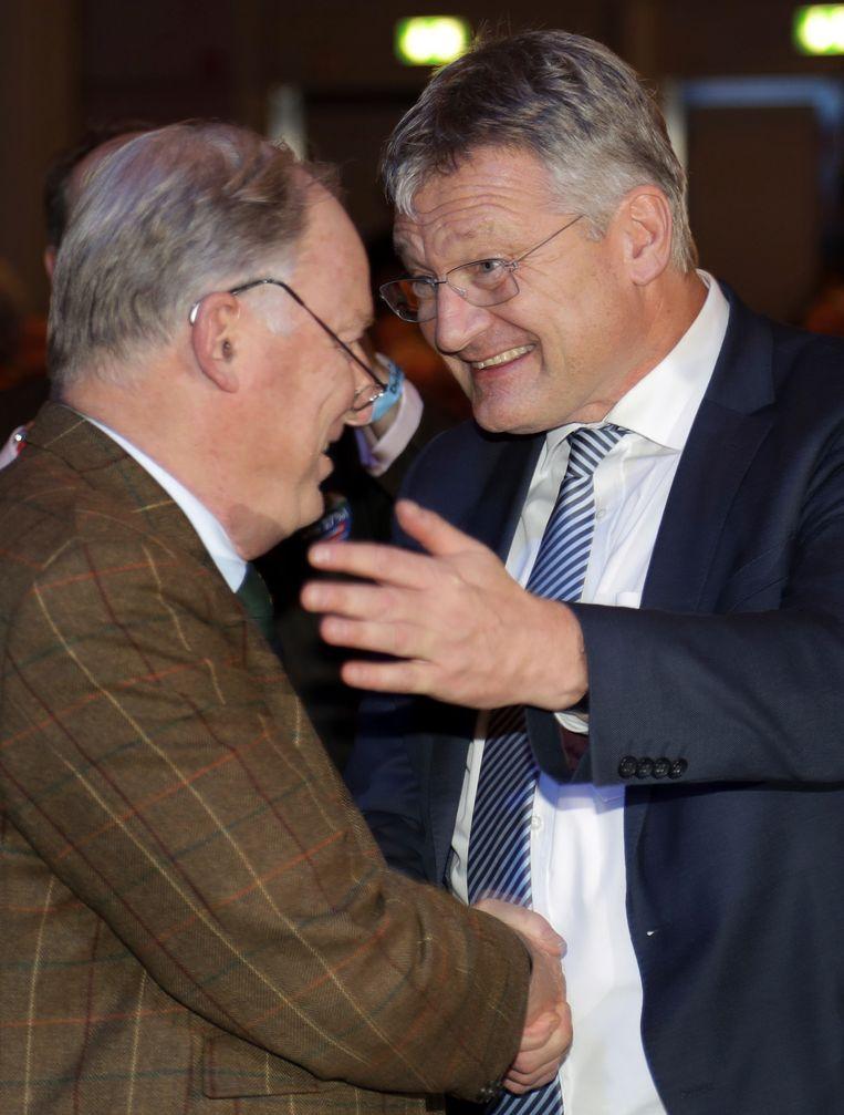 Joerg Meuthen (rechts) en Alexander Gauland (links) Beeld AP