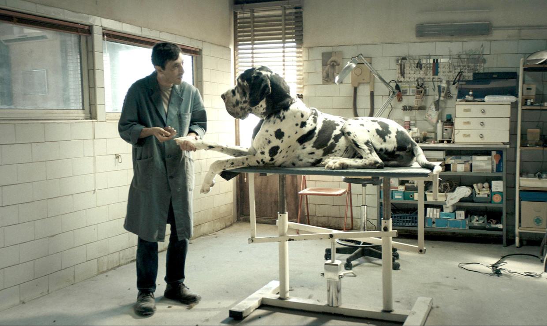 Marcello Fonte in 'Dogman' Beeld RV