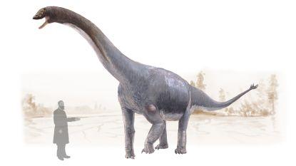 Ook dinosaurussen konden kanker krijgen