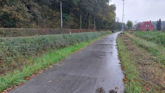 Raadslid Vanlerberghe (Samen) vraagt verscherpt toezicht op proper houden fietspaden